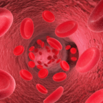 Animated graphic of blood cells in vein