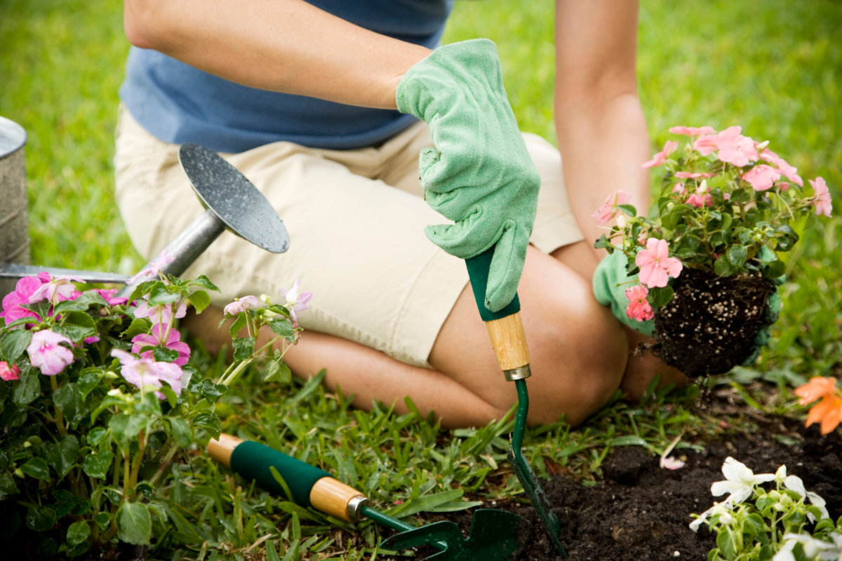 person kneeling and gardening